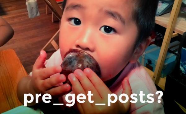 pre_get_posts?