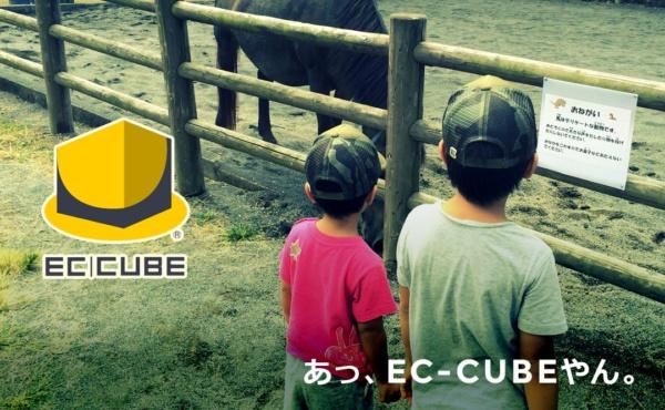 あっ、EC-CUBEやん。